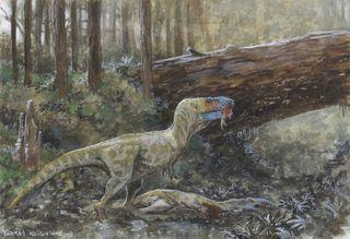 Tyrannosaur cannibalism
