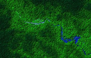 View of Honduras rainforest, taken from the LiDAR plane