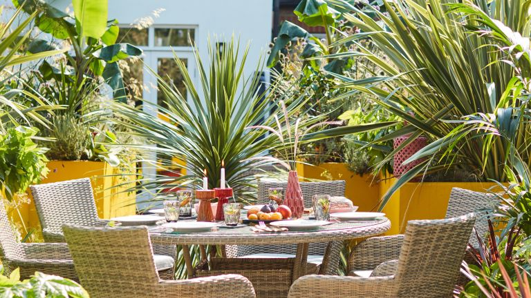 best tropical plants: urban garden with dining area surrounded by tropical plants