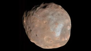 Mars's larger moon, Phobos, is a cratered, asteroid-like object.