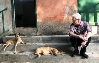 Paul O'Grady: I nearly died making Pictured Paul O'Grady in India. For the Love of Dogs: India