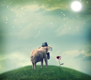 Surrealistic elephant with a hat staring at a flower.