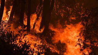 A wildfire grows near a home on Twilight Lane in Santa Cruz, California, on Aug. 19, 2020.
