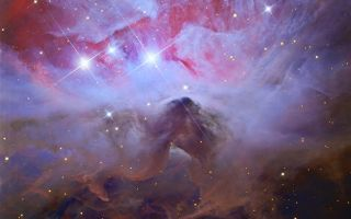 Running from Beauty: A Darker Side of Orion