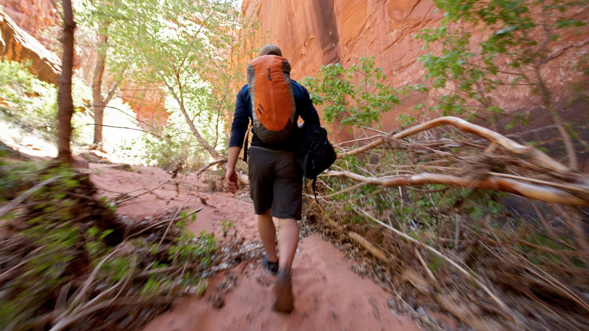 Best daypacks: for day walks, summit hikes and adventures from basecamp