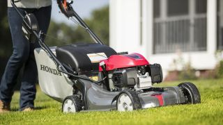 Best gas lawn mowers 2020: Find the best push behind mower for your lawn