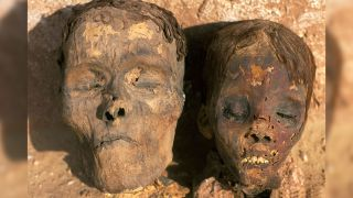 Heads of two mummies that were excavated by archaeologists at mummies at Dakhla Oasis in Egypt.