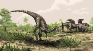 an artist's illustration of a Nyasasaurus, considered the oldest known dinosaur, from the Middle Triassic of Tanzania.