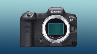 Canon EOS R7 rumors: Could Canon release a Canon EOS R APS-C camera?