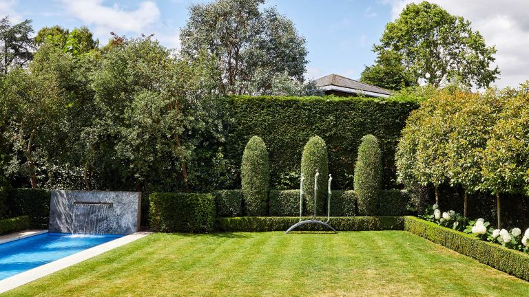 monty don hedge trimming tips