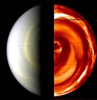 Hot Discovery: Dark Vortex on Venus