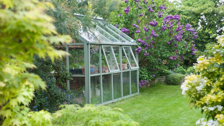 A greenhouse with windows open