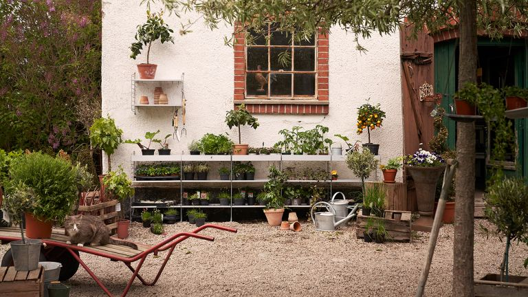 garden storage ideas from string furniture – shelves with plants