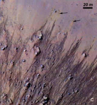 Recurring Slope Lines on Horowitz Crater
