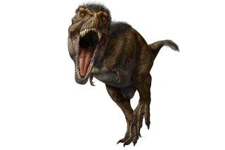 t. rex: the ultimate predator
