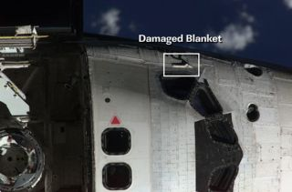 NASA Eyes Damaged Thermal Blanket on Discovery's Hull