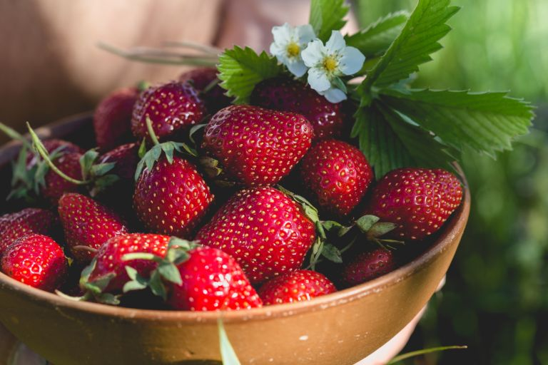 organic food: strawberries