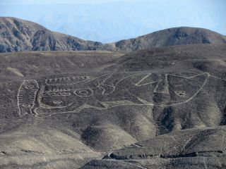 The resdiscovered orca geoglyph lies on a desert hillside in the remote Palpa region of southern Peru.