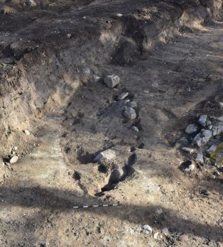 Recent excavations of viking boat burials reveal the remains of a man, a horse and a dog.