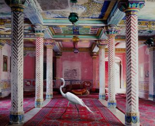 Karen Knorr, Ledoux's Receptions, from Fables