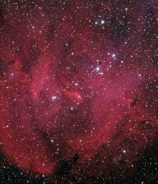 Running Chicken Nebula Skywatching Lau
