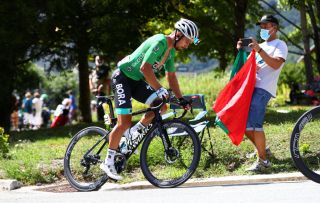 Bora-Hansgrohe's Peter Sagan was on the attack on stage 2 of the 2020 Tour de France as part of his quest to take an eighth green points jersey title