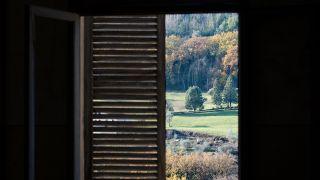 10 fall gardening tips: image of autumnal outside scene outside window