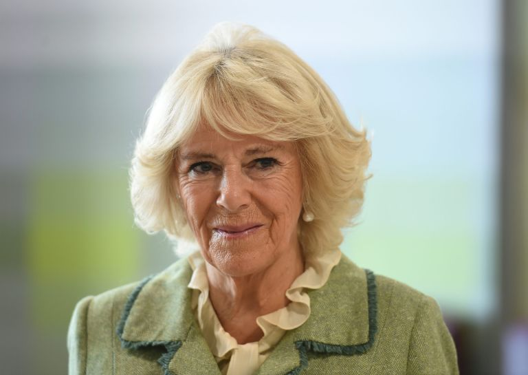 Camilla Parker Bowles marks and spencer haul