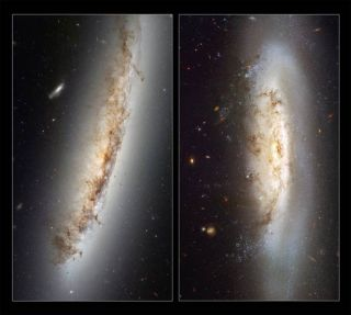 Speeding Galaxies Distorted by Space Winds