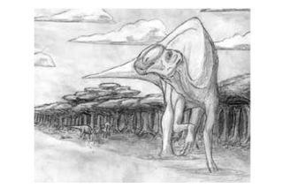 dinosaur, new discovery