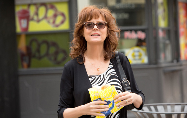 The Meddler Susan Sarandon