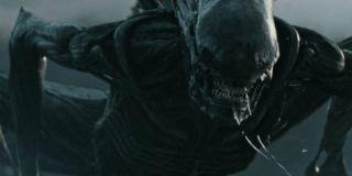 The xenomorph in Alien: Covenant
