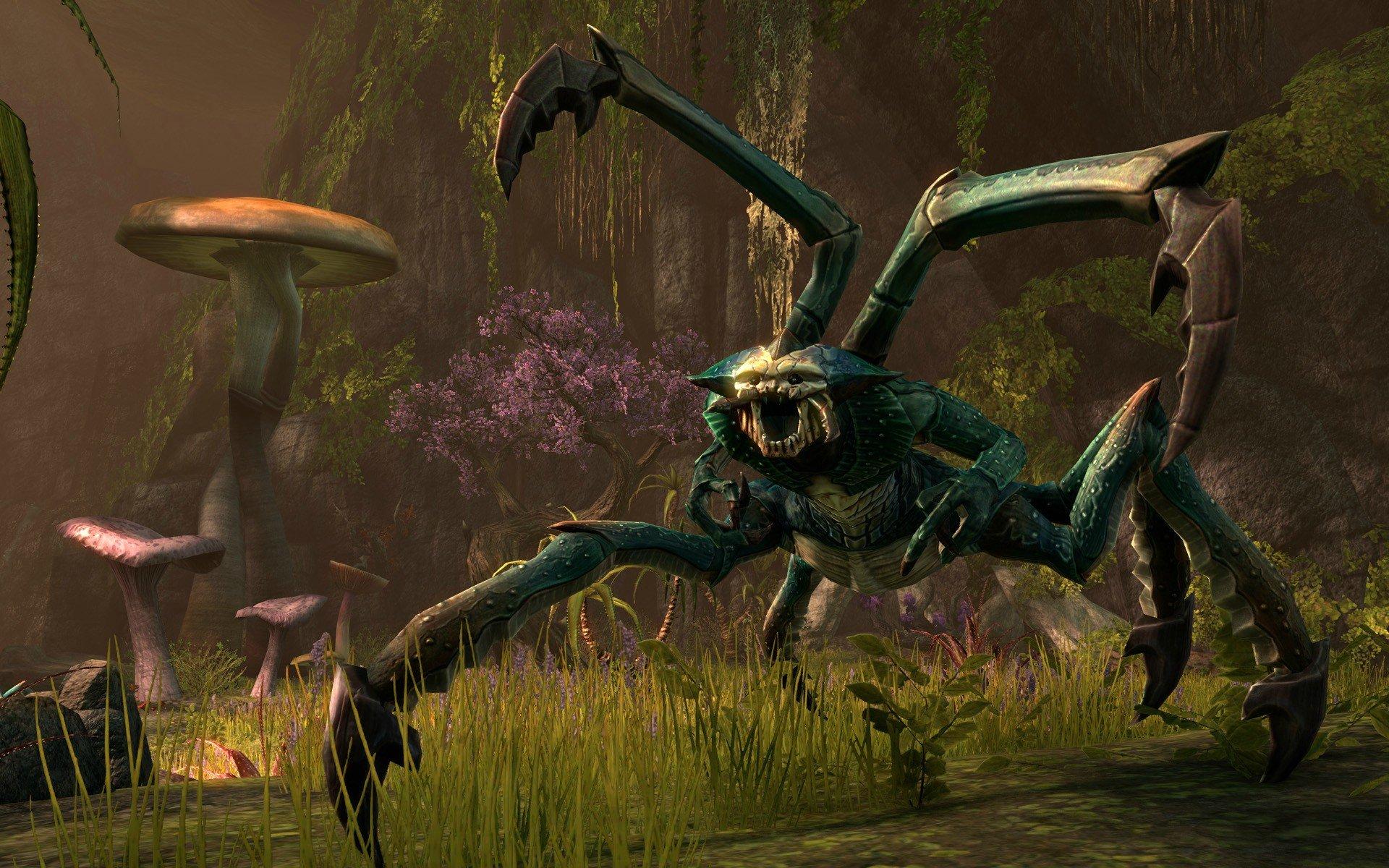 Elder Scrolls Online Screenshots Travel Across Tamriel #24401