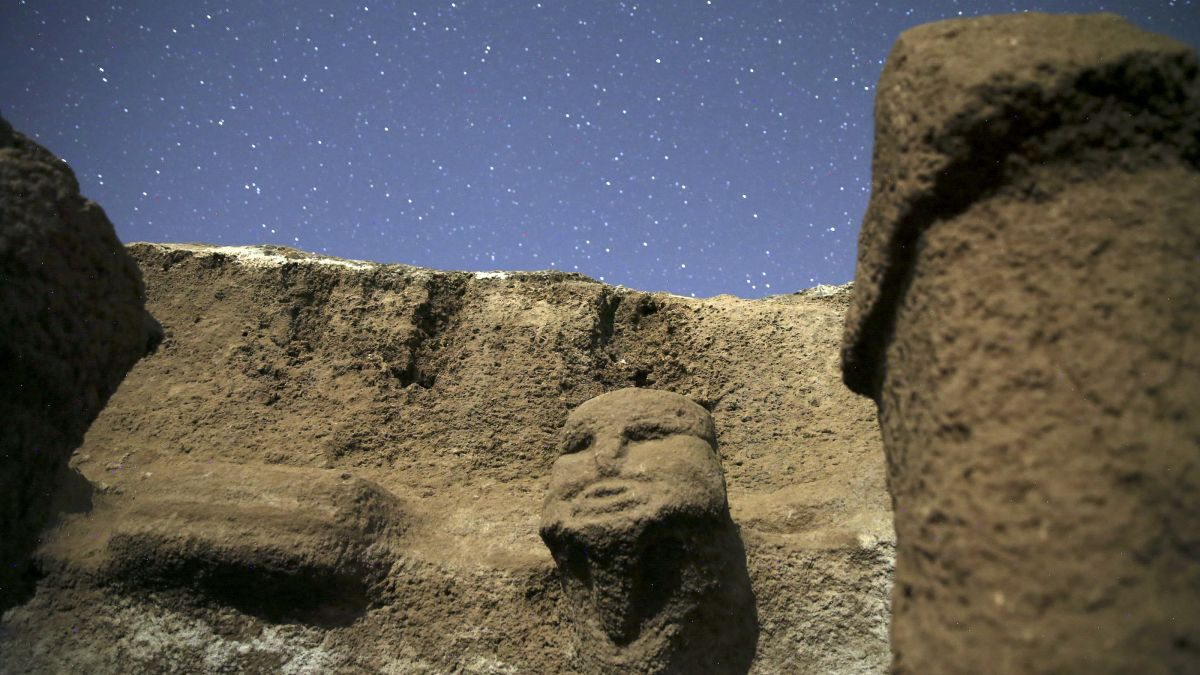 Human head carvings and phallus-shaped pillars discovered at 11,000-year-old site in Turkey