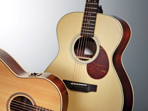 The Breedlove is an elegant-looking guitar.