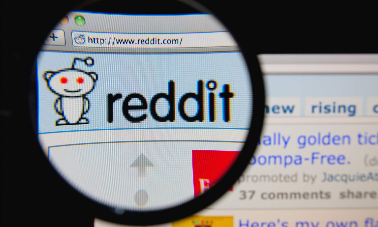 How to Report Bullying and Abuse on Reddit | Tom's Guide