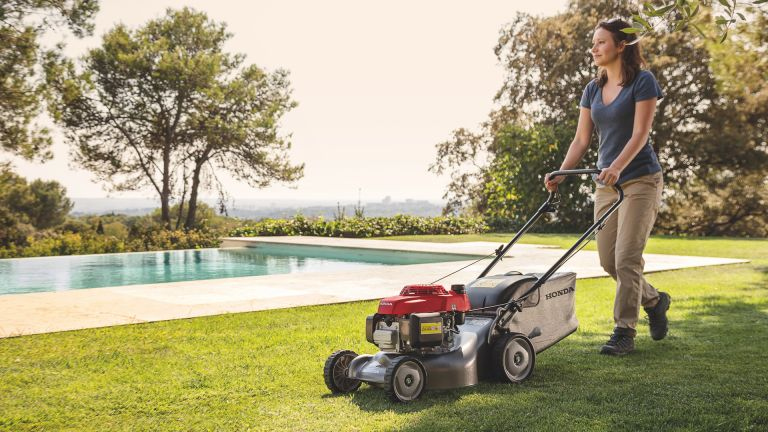 Best lawn mowers 2019