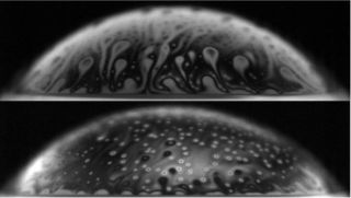 A bubble contaminated with bacteria (shown in the bottom panel) lasts much longer than a clean bubble.