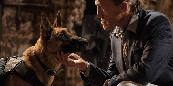 The dogs in John Wick are about to bite your crotch