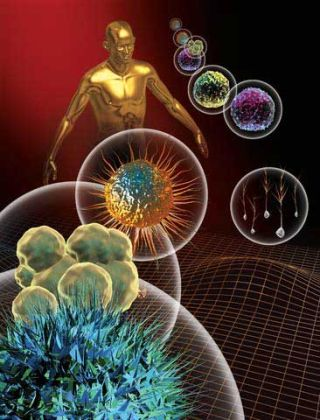 The Chemistry of Life: The Human Body | Live Science