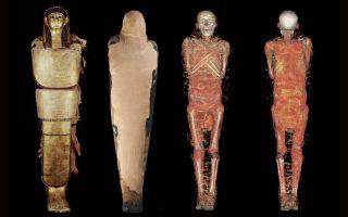 pharaoh eye doctor mummy