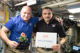 300 Days in Space