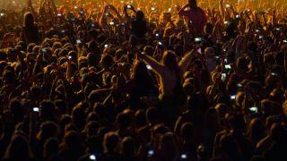 Festival fans