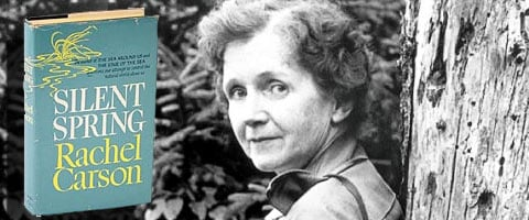 A brief review of rachel carsons book silent spring