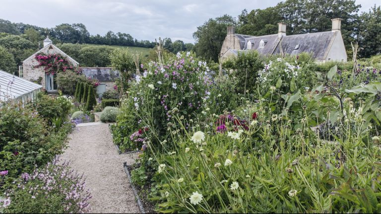 How To Plant A Cottage Garden Border, How To Make A Cottage Garden Border
