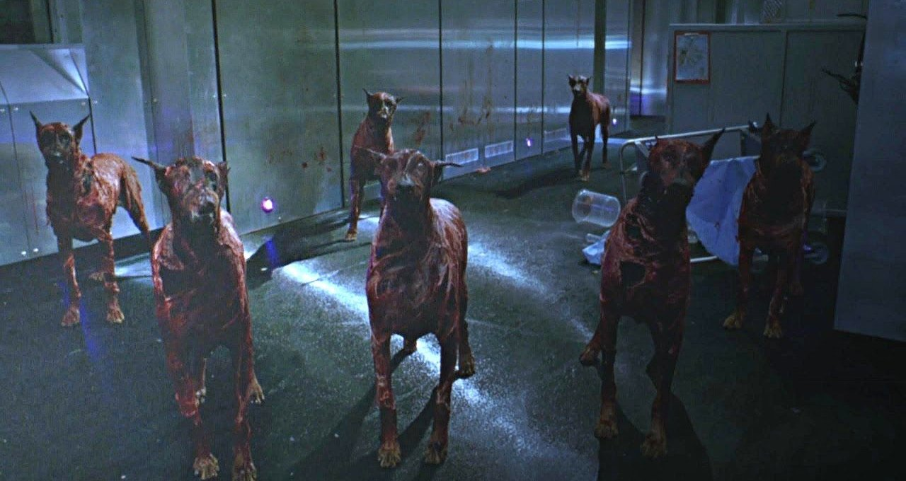 A group of T-virus dogs in Resident Evil