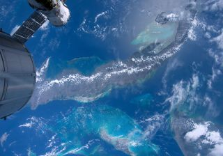Bahama Reefs in IMAX film A Beautiful Planet