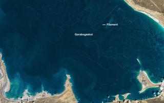 An image taken on April 4, 2017, by the imager aboard the Landsat 8 satellite shows lines of foam that formed in the shallow lagoon called Garabogazköl in Turkmenistan.
