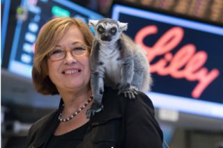 lemur lady Patricia Wright researches how to save lemurs