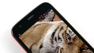 Tigerish new Motorola shows its claws at MWC